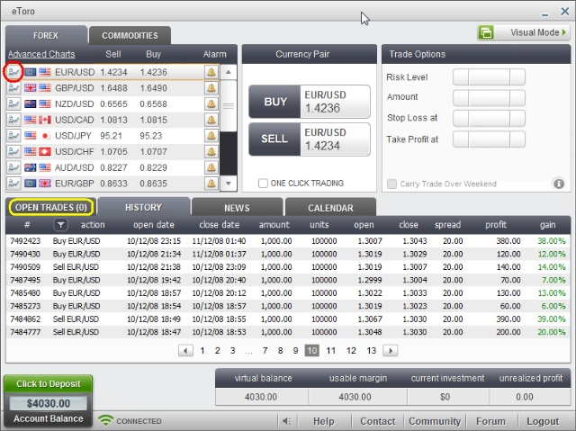 screen shot of the history of all executed Forex operations